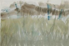 Lea-Kleiner.-Pastos-en-primavera-2012-acuarela-sobre-papel-51-x-71-cm.-Coleccion-del-artista