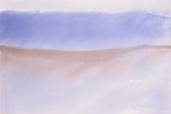 Lea-Kleiner.-Tormenta-de-arena-2005-acuarela-sobre-papel-36-x-545-cm.-Coleccion-particular